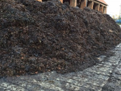 zakladanie kompostu